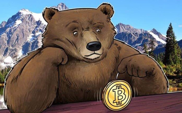 Bitcoin's future: Bear or Bull market?