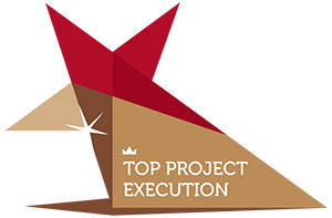 top-project-execution
