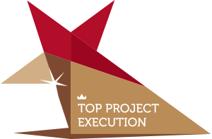 TOP PROJECT EXECUTION